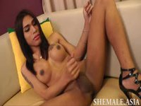 Shemale with big boobs stroking her cock